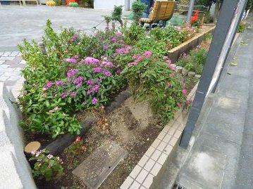 白金台駅から近い上大崎公園の画像2