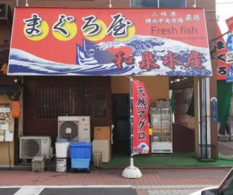 和泉水産の画像1