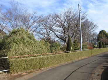 井田伊勢台公園の画像1