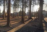 宇都宮記念公園みどりの森