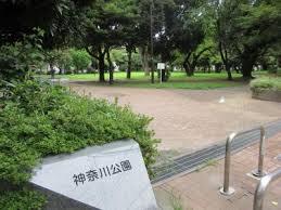 神奈川公園の画像2