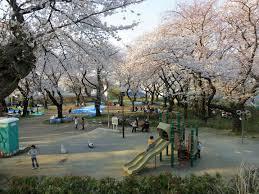 幸ヶ谷公園の画像1