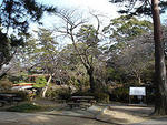 つつじ公園の画像