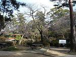 つつじ公園の画像1