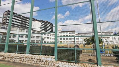 西郷小学校。の画像3