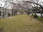 上野公園の画像