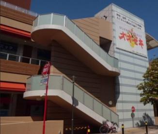 オオゼキ市川店の画像1