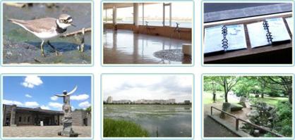 谷津干潟自然観察センターの画像1