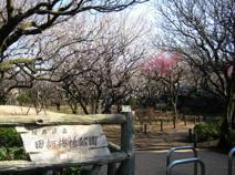 練馬区田柄梅林公園