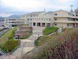 桂木小学校。