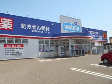 ウエルシア 新潟新和店の画像1