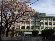 八王子市立柏木小学校
