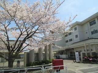 八王子市立秋葉台小学校の画像1
