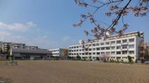 八王子市立高尾山学園