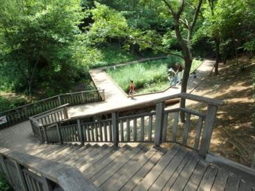 宮前美しの森公園の画像1