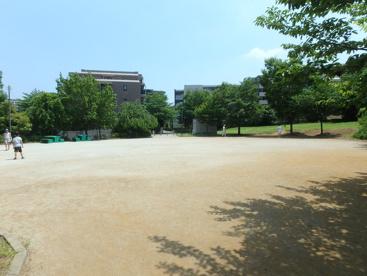 宮前美しの森公園の画像2