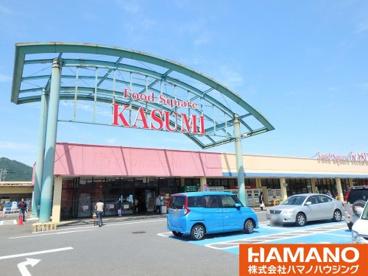 カスミ フードスクエア岩瀬店の画像1