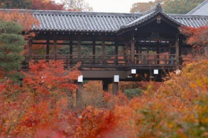 東福寺の画像1