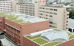日本赤十字学園(学校法人)の画像1