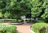 渋谷区立 桜丘公園