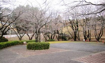さくら坂公園の画像1
