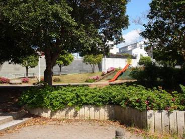 ねむの木公園の画像1