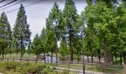 打上川治水緑地の画像1