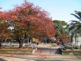 桜之宮東公園