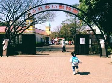 平塚市総合公園の画像2