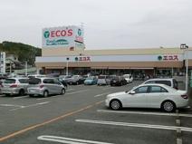 エコスたいらや奈良橋店