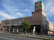 ライフ 緑橋店
