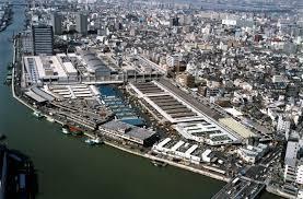 大阪市中央卸売市場 本場の画像1