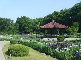 城北公園の画像1