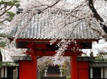 大林寺保育園