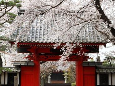 大林寺保育園の画像1