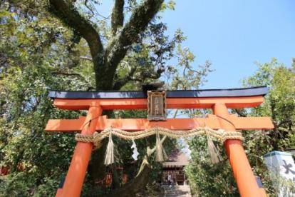 大将軍神社の画像1