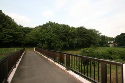 都立野川公園の画像2
