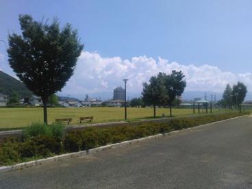千塚公園の画像1