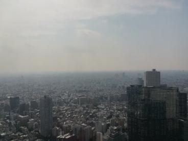 東京都庁の画像3