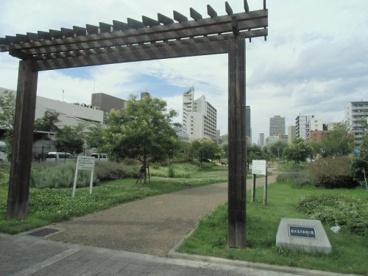 難波塩草敷津公園の画像1