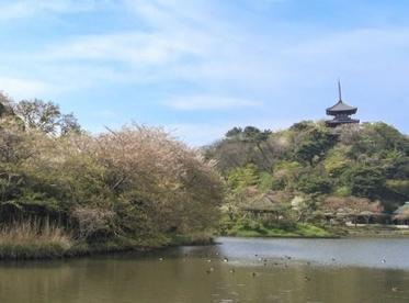 三溪園の画像1