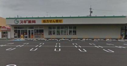 スギドラッグ 伊勢崎店の画像1