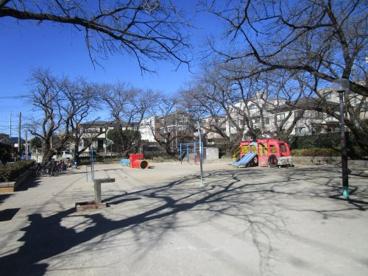 葉根木公園の画像1