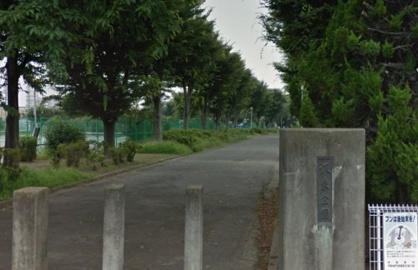 坂東公園の画像1