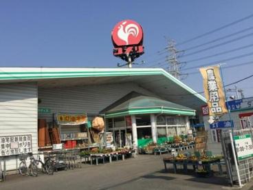 コメリハード&グリーン伊勢崎店の画像1