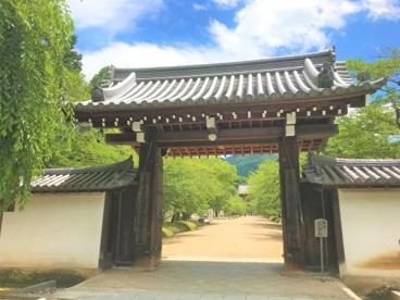 醍醐寺の画像2