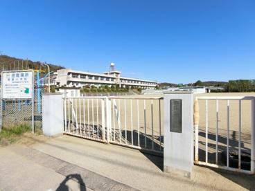 関屋小学校の画像1