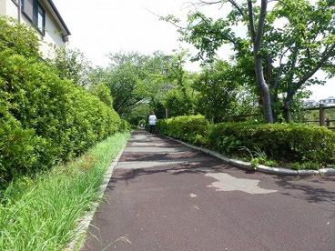 長津川緑地の画像1