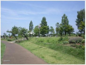 伊勢崎西部公園の画像1