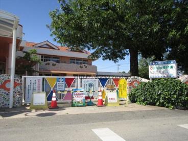 白ばら保育園の画像1